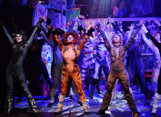 cats at radlett centre review